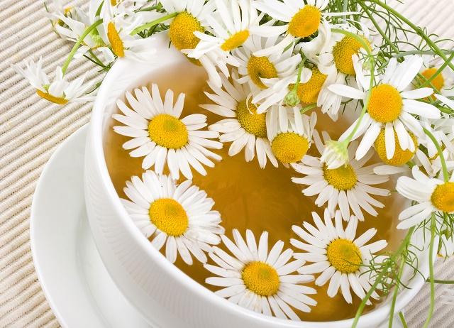 Chá de camomila cheio de flores