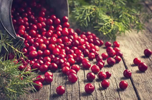 Esse pequeno fruto é capaz de tratar a candidíase e aliviar seus sintomas