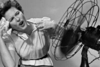 Tratamentos naturais para cessar os sintomas da Menopausa