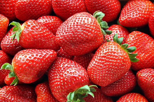 Imagem de vários morangos vermelhos