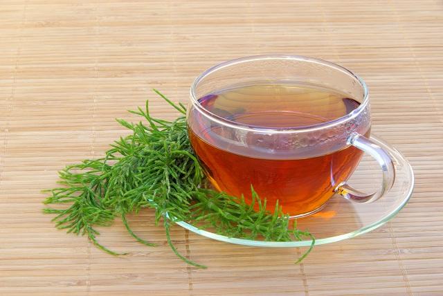 Xícara com chá de cavalinha