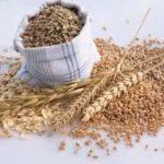 Benefícios e receitas com aveia