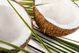 O óleo de coco emagrece! Aprenda a prepará-lo em casa!