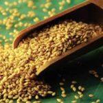 Gergelim – uma semente cheia de benefícios para saúde