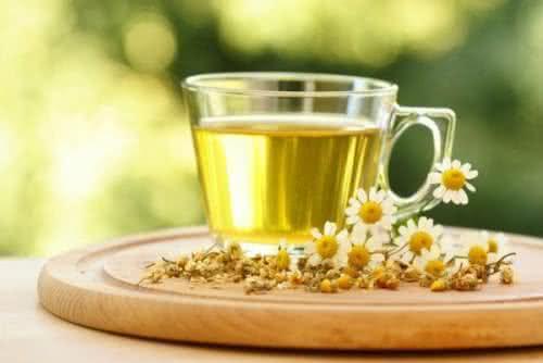Benefícios e propriedades da camomila e de seu chá
