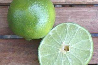 O poder de cura da Dieta do Limão