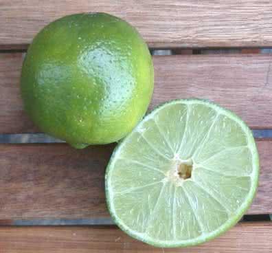 Cura do limão - uma dieta repleta de benefícios