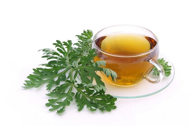 Chá de artemisia