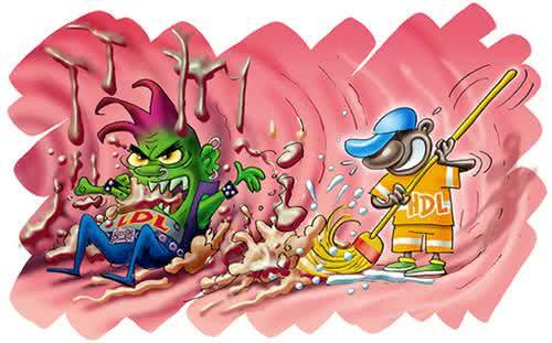 LDL e HDL