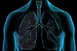 Bronquite – cura para seus sintomas de forma natural