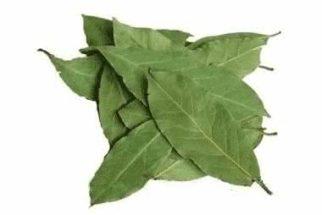 Aprenda a receita do Chá de Folhas de Louro