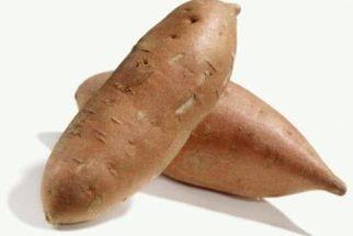 Batata yacon é um tubérculo aliado de quem tem diabetes