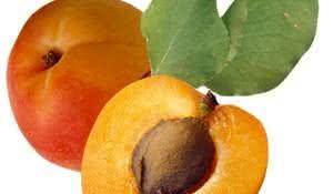 damasco-fruta