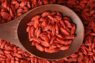 Goji berry pode te fazer emagrecer até 5kg por mês