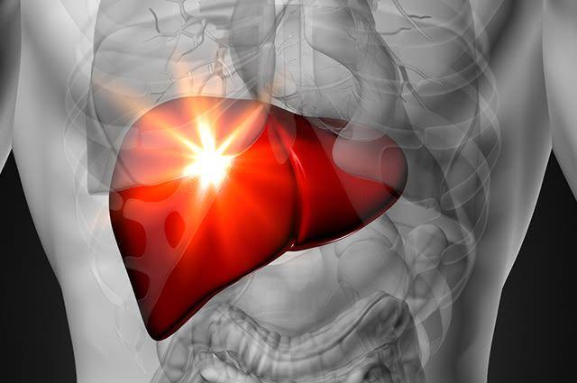 A gordura no fígado pode ser revertida com hábitos saudáveis e o consumo de certas frutas