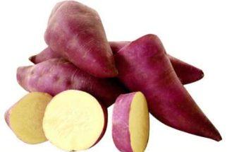 Batata doce – Benefícios para a saúde, emagrecimento e diabetes