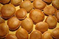 Chá de semente de sucupira – Benefícios e propriedades