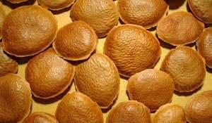 cha-de-semente-de-sucupira-beneficios-e-propriedades