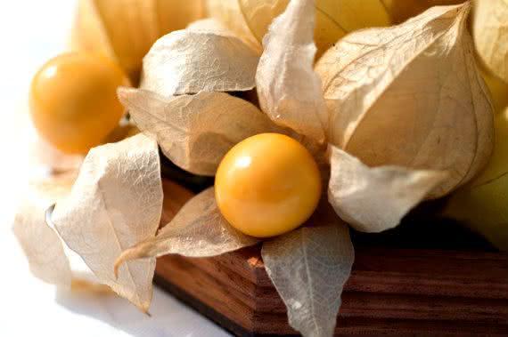 Physalis, a frutinha exótica que ajuda a emagrecer