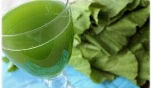 como-fazer-suco-verde
