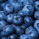 Blueberry – Conheça os benefícios do mirtilo