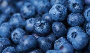 blueberry-conheca-os-beneficios-do-mirtilo