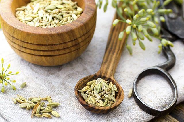 A erva doce pode ser usada no processo de emagrecimento