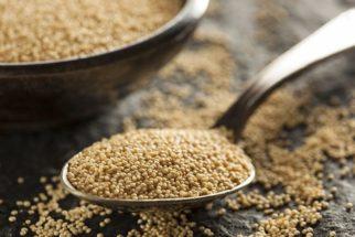 Chá de amaranto – Ótimo para controlar o colesterol