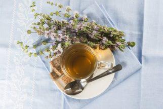 Chá de poejo – Benefícios e propriedades