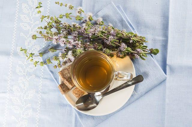 O chá de poejo é um grande aliado para combater problemas de azia