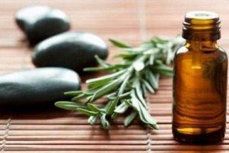 Óleo de alecrim – Benefícios e propriedades