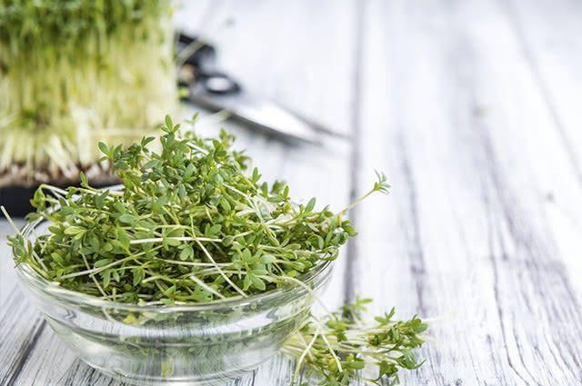 O suco de agrião provoca abundante expectoração mucopurulenta