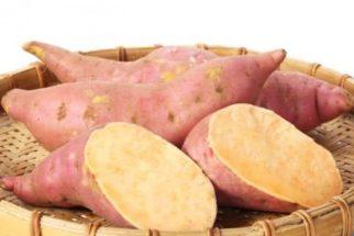 Qual o segredo da batata doce para quem é fitness?