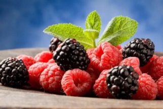 Benefícios da amora e seu chá emagrecedor