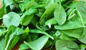 espinafre-os-beneficios-e-controversias-do-vegetal
