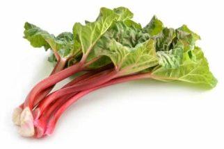 Ruibarbo – Um excelente digestivo