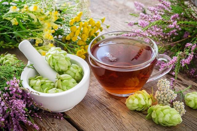 Xícara com chá de lúpulo