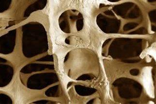 Chás para tratamento da osteoporose
