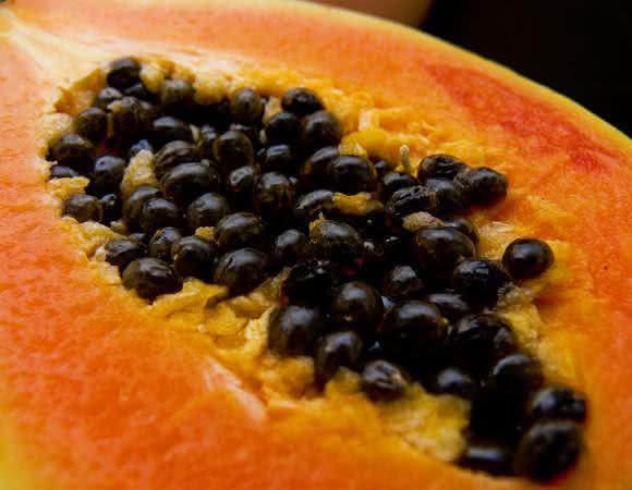 Benefícios das sementes de mamão