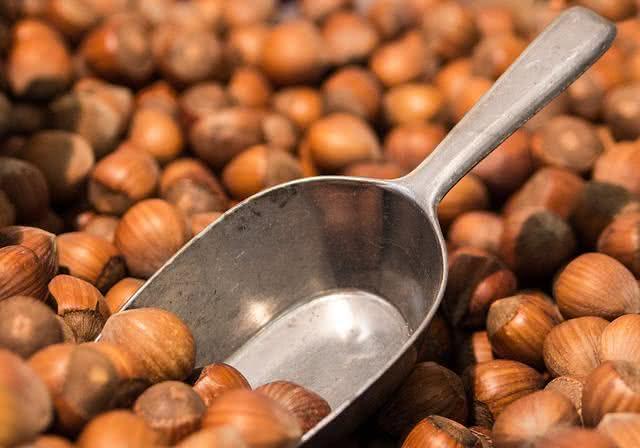 Óleo de avelã para o colesterol e outras finalidades