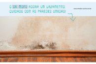 Evite o mofo usando ingredientes caseiros