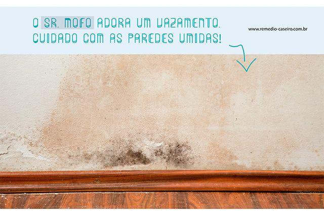 Mofo nas paredes de casa