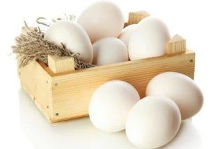 Aprenda algumas técnicas para descobrir se o ovo está estragado