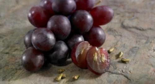 Você sabia? Sementes de uva possuem benefícios tanto quanto a fruta