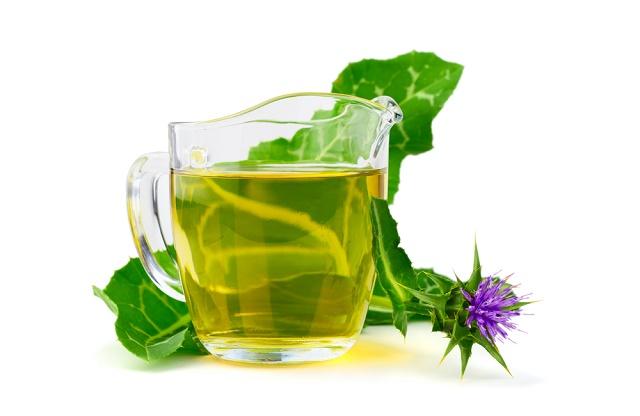 Chá e folha de cardo-mariano