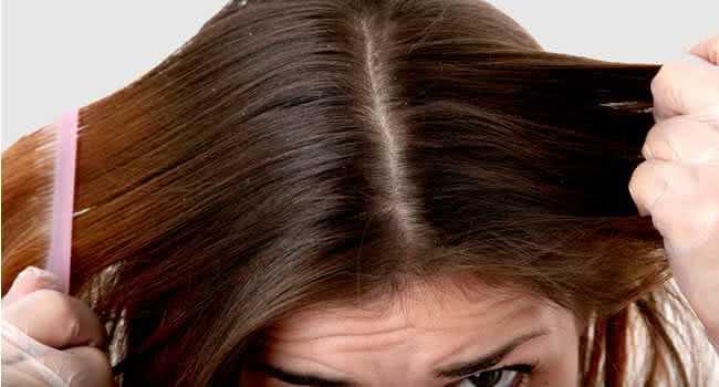 Elimine a oleosidade aplicando tapioca no couro cabeludo