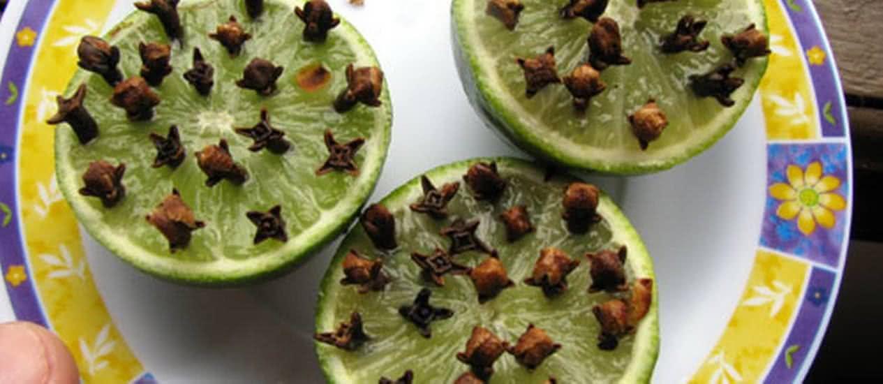 Limão com cravos