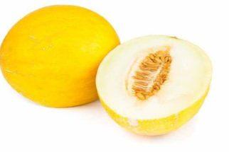 Semente de melão: quais os benefícios para o organismo?