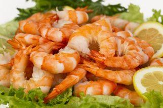 Afinal, comer camarão pode fazer mal à saúde?