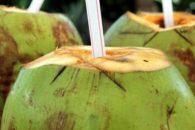 Coco: o soro fisiológico natural. Conheça seus benefícios